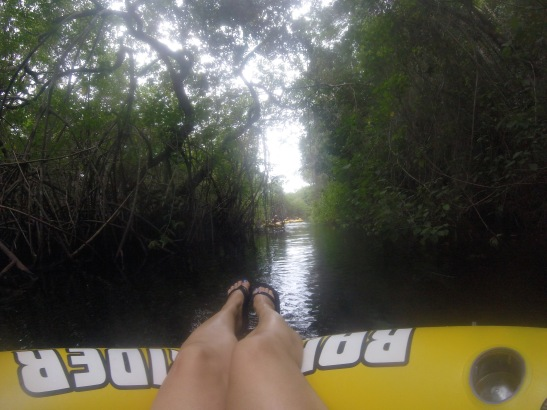 Mangrove river float Playa Rincon